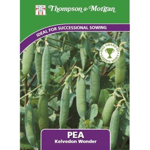 Thompson & Morgan - Vegetables - Pea Kelvedon Wonder - 250 Seed
