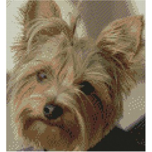 """Yorkshire Terrier Dog Complete Counted Cross Stitch Kit 8.75"""" x 8"""""""