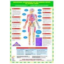 Alcohol Abuse Awareness Poster