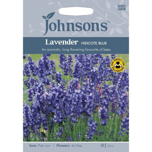 Johnsons Seeds - Pictorial Pack - Flower - Lavender Hidcote Strain - 100 Seeds