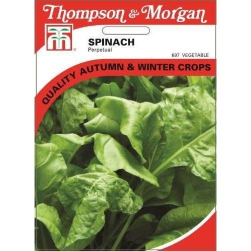 Thompson & Morgan - Vegetables - Spinach Perpetual - 250 Seed