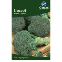 Broccoli Seeds Autumn Calabrese Vegetable 175 Seeds
