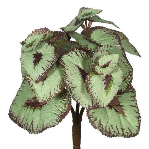 Vickerman FA171801 Begonia Bush-Grey & Brown Greenery Stem - 6 Per Bag