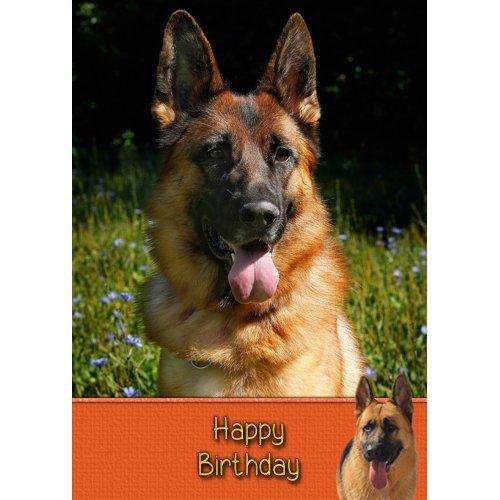 "German Shepherd Birthday Greeting Card 8""x5.5"""