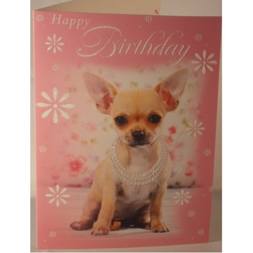 Happy Birthday card Chihuahua puppy 19cm x 13.25cm