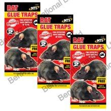 6 X NTI EXTRA STRENGTH LARGE Rat Sticky Glue Traps Boards