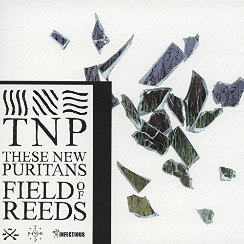 These New Puritans - Field of Reeds [CD]