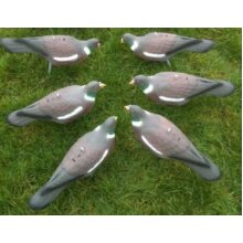 Set of 6 Half Shell Pigeon Decoys With Pegs Realistic Bird Decoy