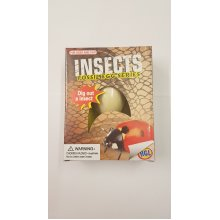 Hgl Glow In The Dark Insect Fossil Egg
