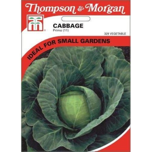 Thompson & Morgan - Vegetables - Cabbage Primo (11) - 400 Seed