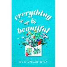 Everything is Beautiful: an unforgettable debut with a huge heart | Hardback - Used