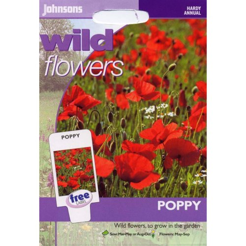Johnsons Seeds - Pictorial Pack - Flower - Wildflower Poppy - 2000 Seeds