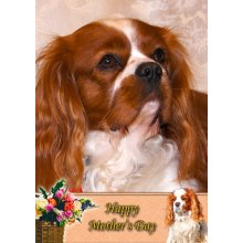 """Cavalier King Charles Spaniel Mother's Day Greeting Card 8""""x5.5"""""""