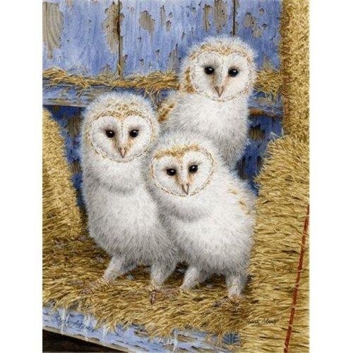 Barn Owl Chicks Flag Garden Size