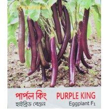 Indian Bangladeshi Begun King Aubergine Brinjol, Lota Baingon 100 Seed