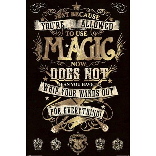 Harry Potter Magic Poster