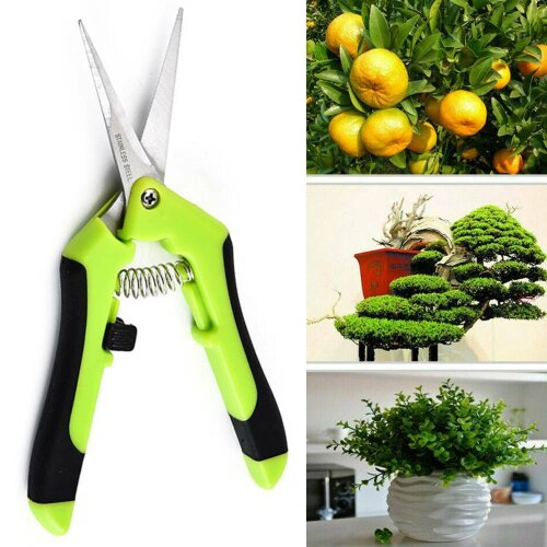 Garden Scissors Pruning Shears Plant Trimming Trees Snips Branch Secateurs Tools