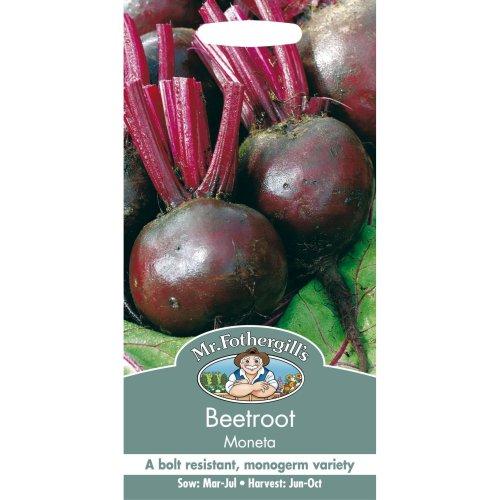 Mr Fothergills - Pictorial Packet - Vegetable - Beetroot Moneta - 150 Seed