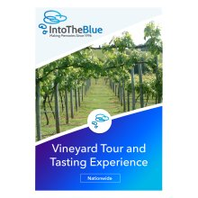 Vineyard Tour and Wine Tasting Gift Experience Voucher for 2 People