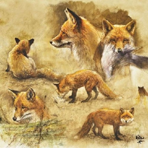 Ambiente Pack of 20 Paper Napkins / Serviettes  - Portrait of Foxes - 3Ply