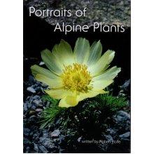 Portraits of Alpine Plants , Robert Rolfe - Used