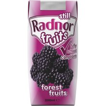 Radnor Fruits Forest Fruits Cartons - 24x200ml