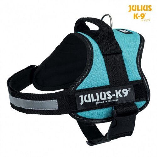 Julius-K9® Dog Powerharness - 2 / L-XL, Ocean
