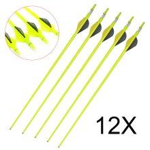 """12Pcs Archery Arrows Carbon Arrow 30"""" Steel Tip For Recurve & Compound"""