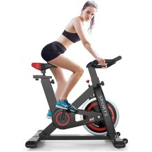 Delfy Stationary Exercise Bike, Indoor Cycling Bike with Adjustable Resistance, Silent Belt Driven, LCD Monitor, Fitness Bicycle for Cardio Workout