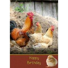 """Chicken Birthday Greeting Card 8""""x5.5"""""""