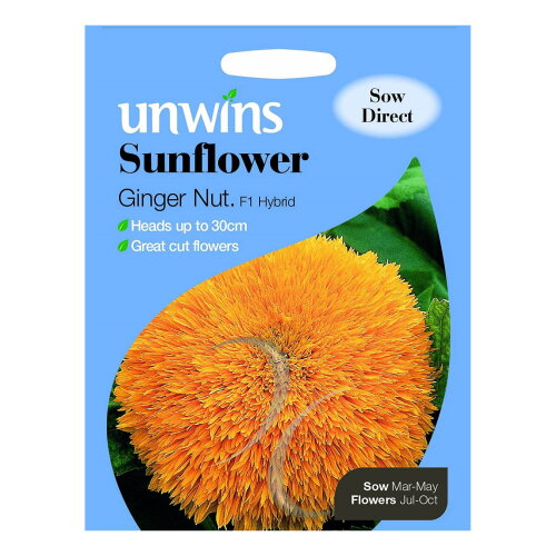 Unwins Grow Your Own Double Bloom Ginger Nut F1 Sunflower Flower Seeds