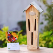 Plant Theatre Butterfly B&B and Flower Seeds for Butterflies - Excellent Gift