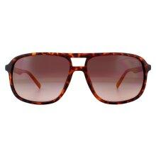 Timberland Sunglasses TB9200 52H Crsytal Black Brown Polarized
