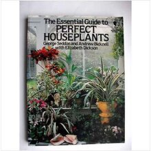 The Essential Guide To Perfect House Plants - Used