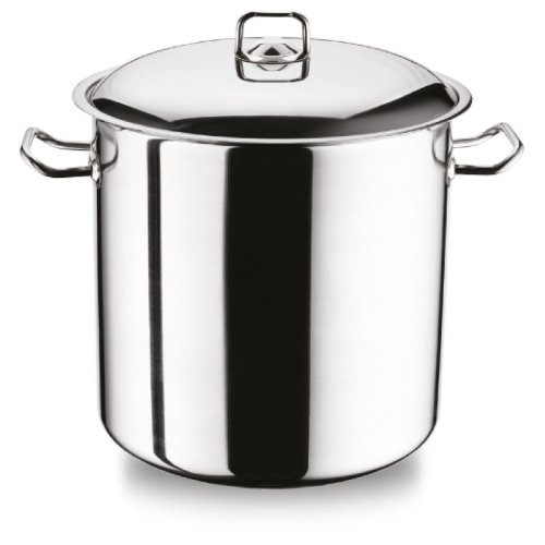 (8.5 Ltr) Geezy MasterClass Stainless Steel Induction Stock Pot With Lid