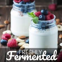 Certified Organic Greek Yoghurt Starter Culture