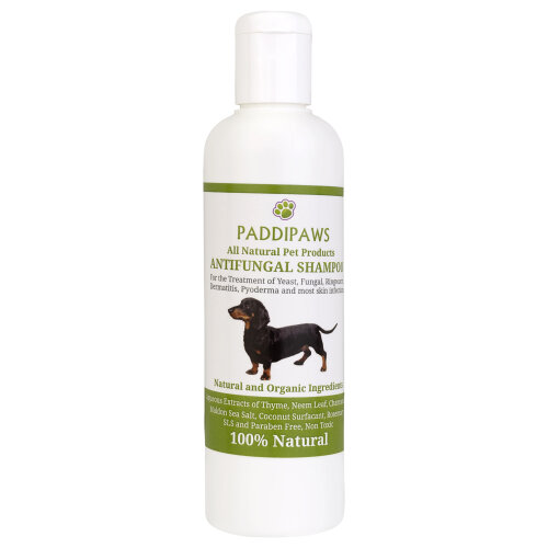 PADDIPAWS 100% Natural Antifungal Shampoo  for Dogs- Antibacterial - Yeast Infections, Ringworm, Dermatitis, Pyoderma 250ml
