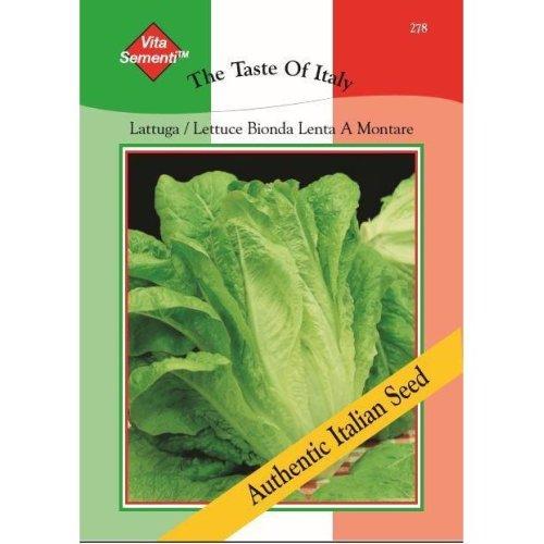 Thompson & Morgan - The Taste of Italy - Vegetables - Lettuce Lattuga Bionda Lenta A Montare 2 - 4800 Seed