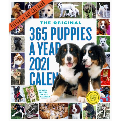 2021 365 Puppies-A-Year Picture-A-Day Wall Calendar by Workman Calendars