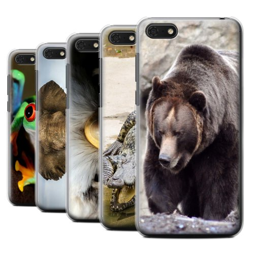 Wildlife Animals Huawei Y5 Prime/Honor 7S Phone Case Transparent Clear Ultra Slim Thin Hard Back Cover for Huawei Y5 Prime/Honor 7S