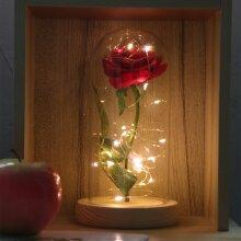 Enchanted Eternal Rose Flower In Glass LED Light Valentine's Party