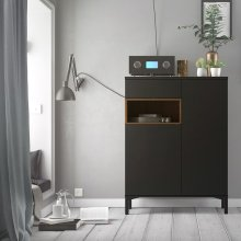 Walnut Sideboard 2 Drawers 1 Door in Black, Modern Home Furniture