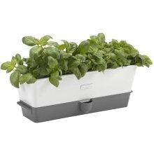 Cole & Mason Fresh Herb Range Self-Watering Potted White Grey Triple