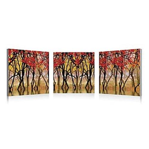 Artistic Bliss SB-65705050 Reflection Over Pound Framed Digital Art