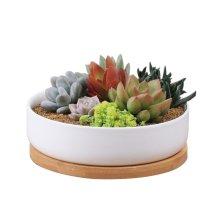 Succulent Planter Ceramic Pot,Y&M(TM) 6 inch Modern White Ceramic Round Design for Succulent Planter Cactus Pots Decorative Flower Bowl Basin/Tub
