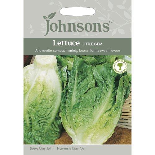 Johnsons Seeds - Pictorial Pack - Vegetable - Lettuce Little Gem - 1250 Seeds