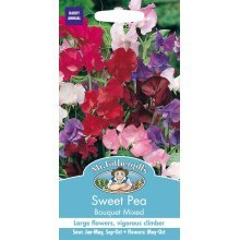 Mr Fothergills - Pictorial Packet - Flower - Sweet Pea  - Bouquet Mixed - 25 Seeds