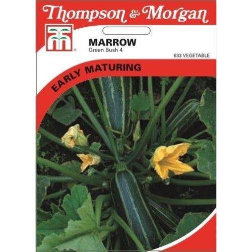 Thompson & Morgan - Vegetables - Marrow Green Bush 4 - 25 Seed