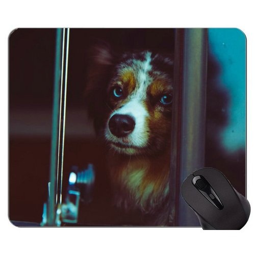 Cute Dog Puppy Lie On The Ground Mouse Pad,Dog Mouse Pad Mat