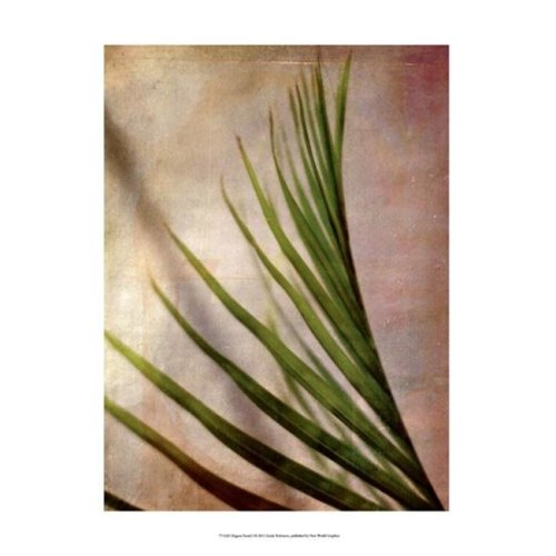 Posterazzi  Elegant Frond I Poster by Emily Robinson -13.00 x 19.00